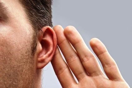 ¿Por qué Oír la Voz del Señor?