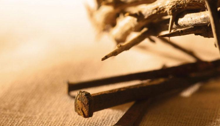 La Clase de Amor que está Edificando Su Iglesia
